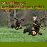 Das Hundehotel Casa Happy
