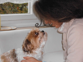 Hundehotel Casa Happy Haan, Familie Dehler Haan, Hundestation Haan
