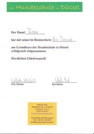 Hundeschule in Düssel, Grundkurs Hundeschule Düssel, Hundetraining Düssel